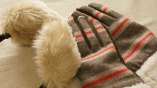 簡単にできる防寒対策! 寒いオフィスを切り抜けろ!