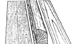 木材に関係する用語「板目」「柾目」って何?