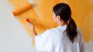 オフィスの壁を綺麗にして、気持ちをリフレッシュ!