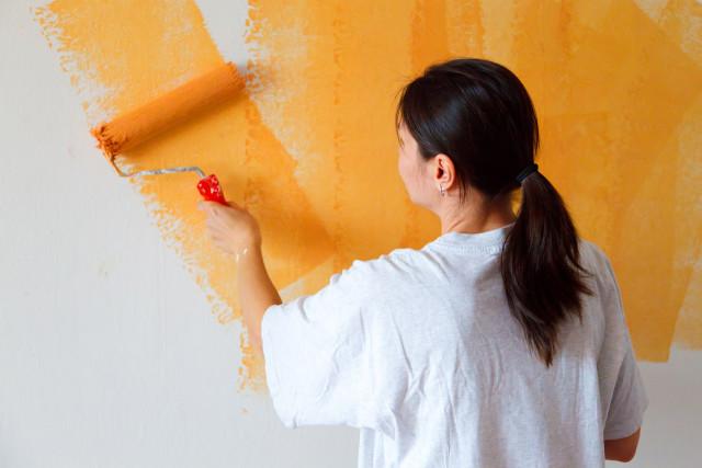 内装 壁 塗装 カラーリング