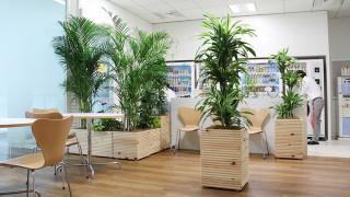 プランター棚とグリーンの組み合わせでオフィスに癒しと潤いを!