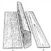 木材に関係する用語「板目」「柾目」。違いと特徴について