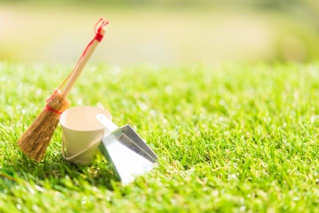 人工芝にするオフィスが増えている?施工事例とメリット・デメリット│画像4